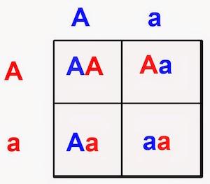 logic-grid-2