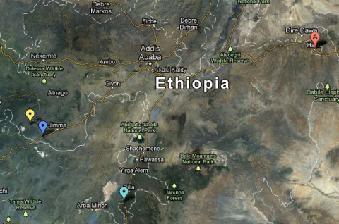 ethiopia-coffee-coop-map